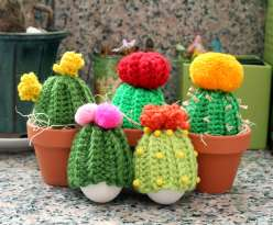 Crocheted Cacti Cozies: 4/13/17