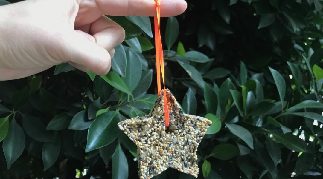 Cookie Cutter Bird Feeders: 10/5/17