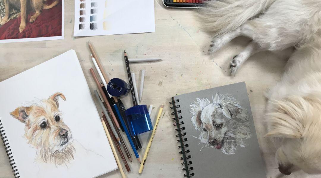 Colored Pencil Pet Portraits: 5/8/18