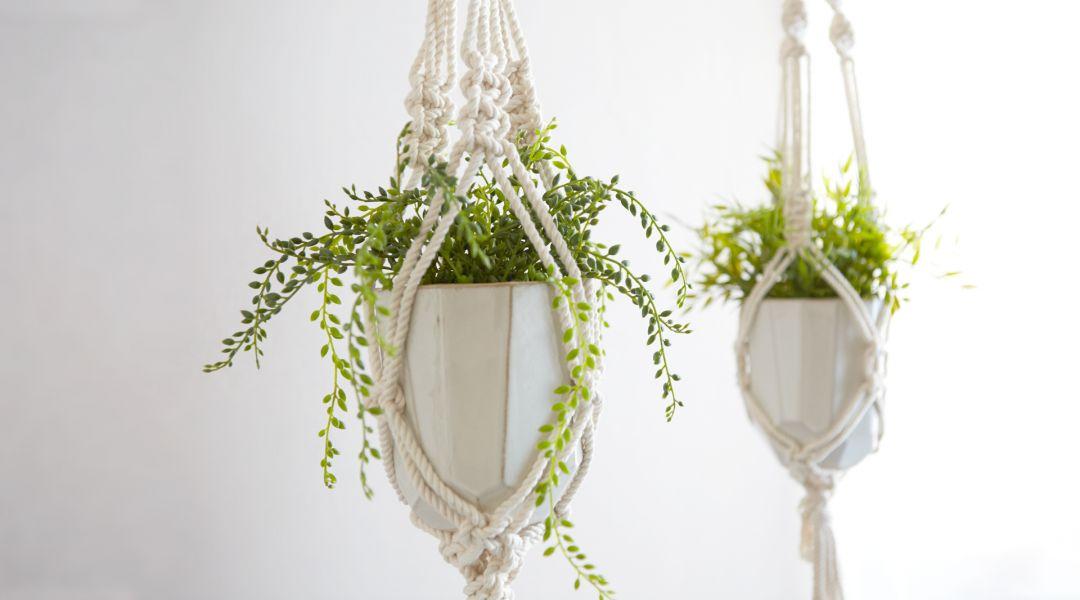 Make a Classic Macramé Plant Hanger