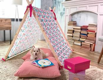 Customized Play Tent: 1/10/2017