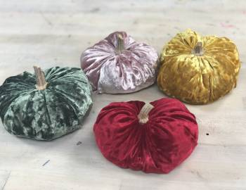 Velvet Pumpkins: 10/25/18